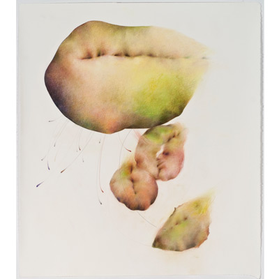 "Chayote, Cycles II, 48"" x 42"", mixed media on sanded paper, 2009"